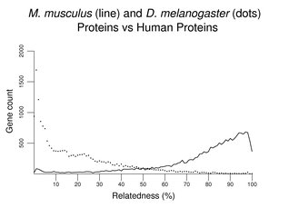 M. musculus (line) and D. melanogaster (dots) Proteins vs Human Proteins