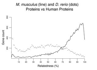 M. musculus (line) and D. rerio (dots) Proteins vs Human Proteins