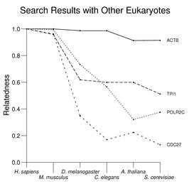 Search Results with Other Eukaryotes